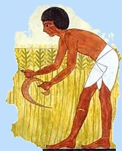 Primary homework help egypt farming