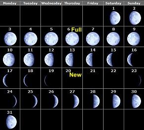 Primary homework moon phases (guelph university mfa creative writing)