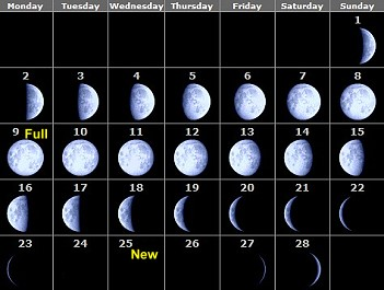 Phases of the Moon 2009 - month by month