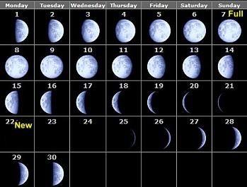 Homework help moon