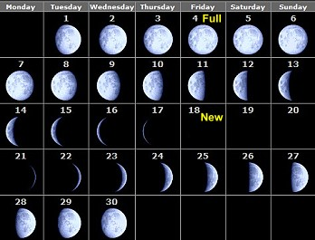 Phases Of The Moon 2009 Month By Month