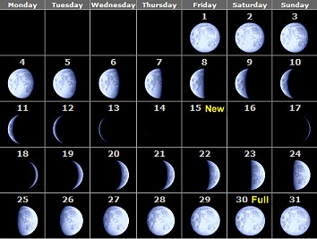 Primary homework help moon phases