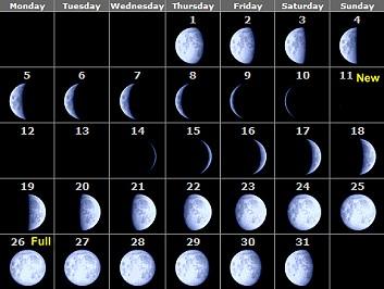 The moon primary homework help