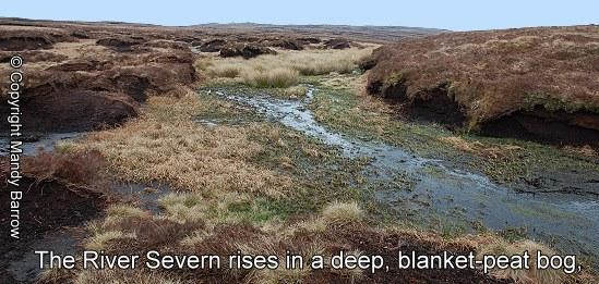 Source Of The River Severn Peat Bog