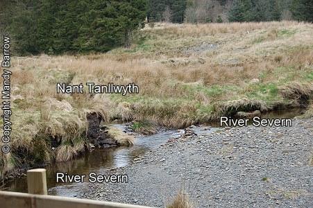 Rivers homework help