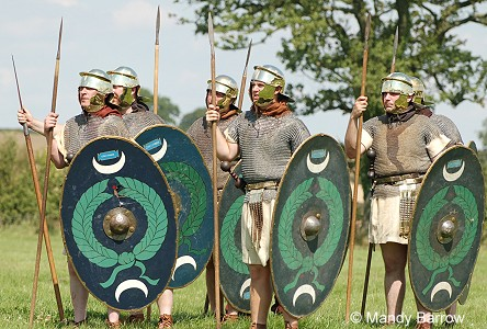 Primary homework help roman shields