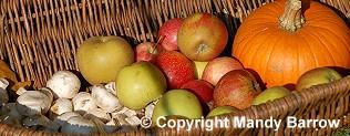 Roman food veg forumfinder Image collections