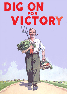 War Campaigns And Posters